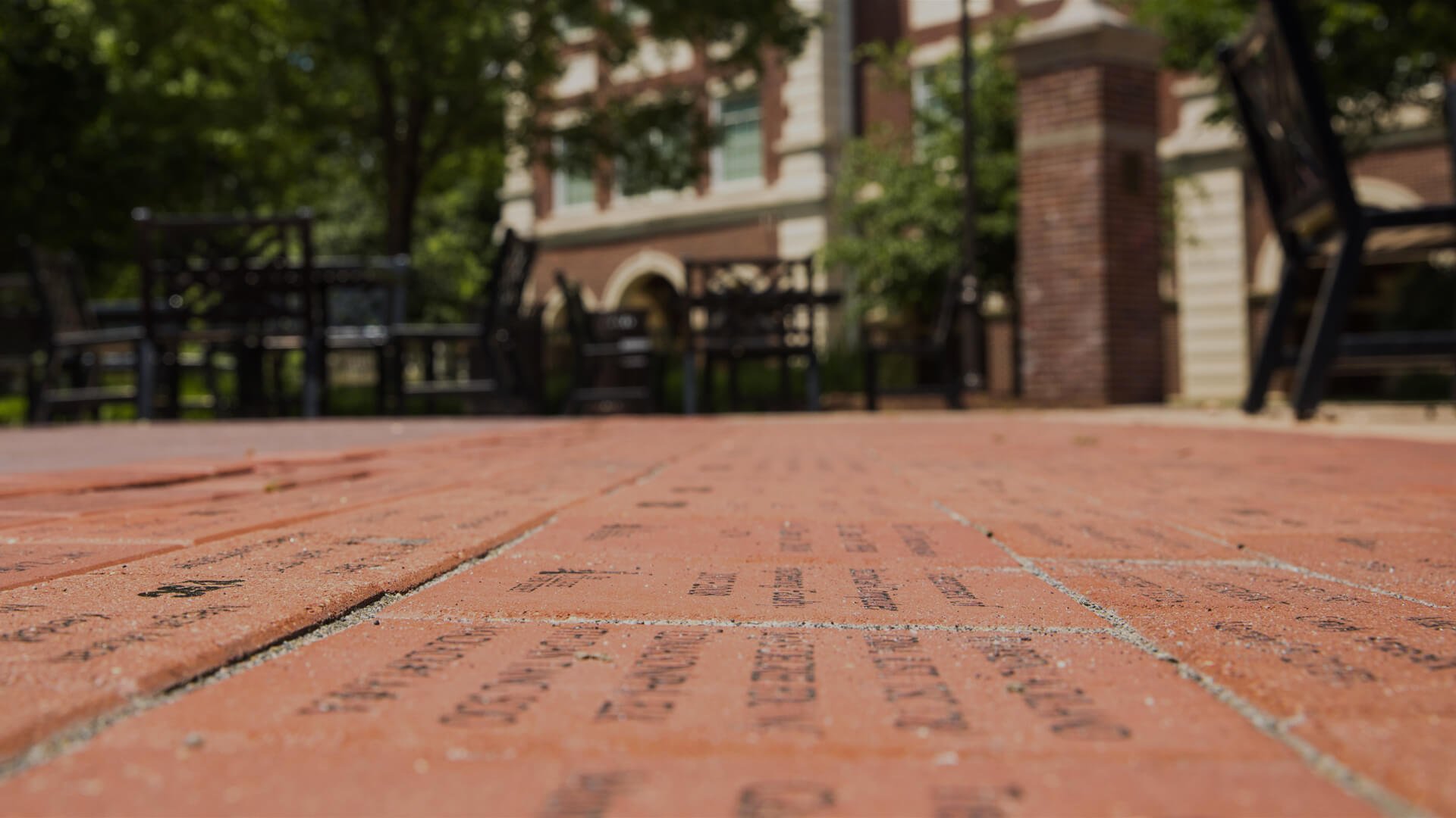 Alumni Grove Bricks